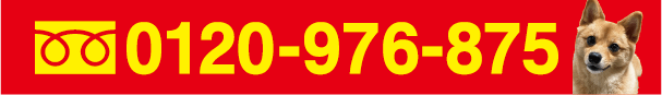 0120-976-875